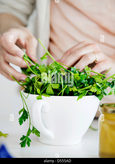 Woman putting fresh herbs in bowl - Stock Image