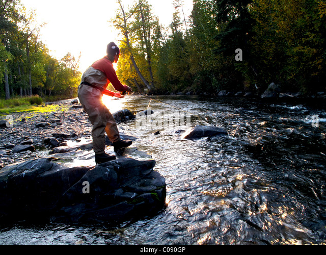 Kenai river stock photos kenai river stock images alamy for Russian river fishing