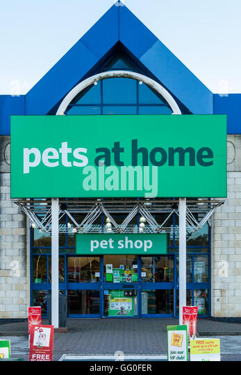 pets at home stores stock photos pets at home stores. Black Bedroom Furniture Sets. Home Design Ideas