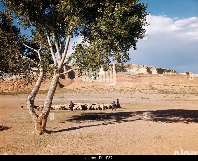 tonalea hindu personals Flagstaff golf dating in prescott valley sedona cottonwood chino valley williams bellemont cameron cornville rimrock clarkdale tonalea jerome humboldt lake.