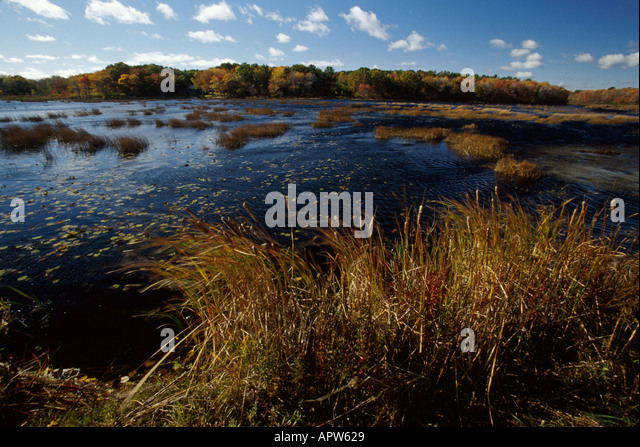 New Hampshire Rye Beach coastal wetlands marsh scenery water - Stock Image