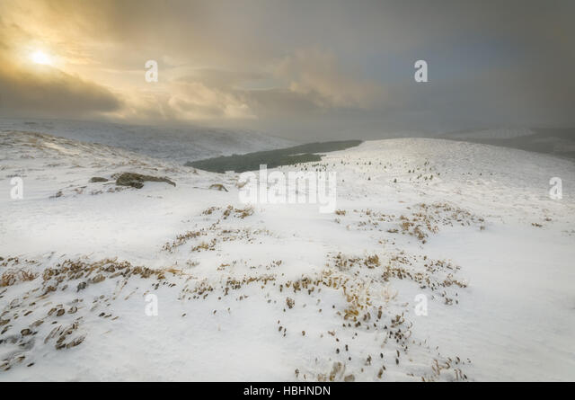 Snow in Wicklow Mountains - Stock Image