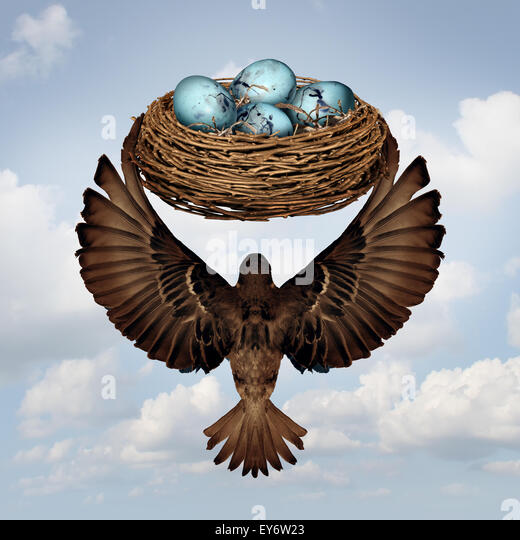 Home moving concept and relocating real estate metaphor as a mother or father parent bird transporting a nest full - Stock Image