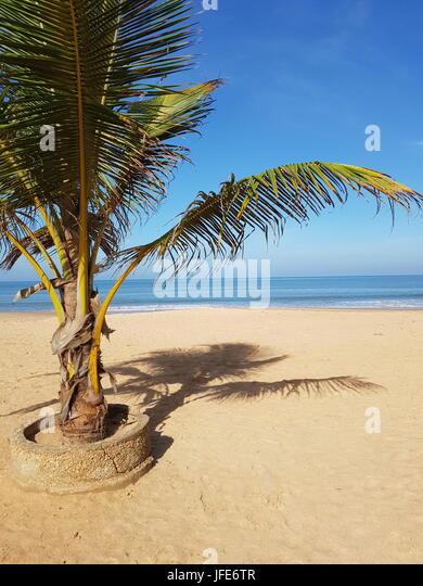 Beautiful Beach In Saly, Senegal - Stock Image