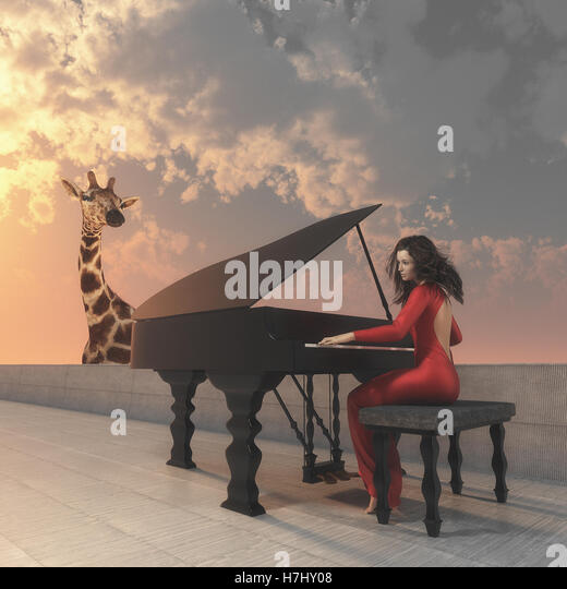 Beautiful women in red dress playing grand piano on a terrace and a giraffe shows up behind the wall.  This is a - Stock Image