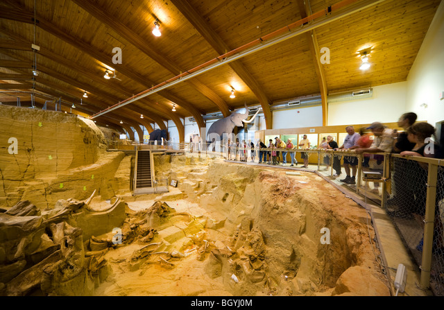 The Mammoth Site Museum, Hot Springs SD. Visitors looking into the bonebed with mammoth bones tusks fossils in paleontology - Stock Image