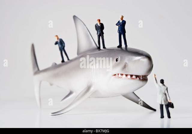 Business figurines placed with a shark figurine. - Stock-Bilder