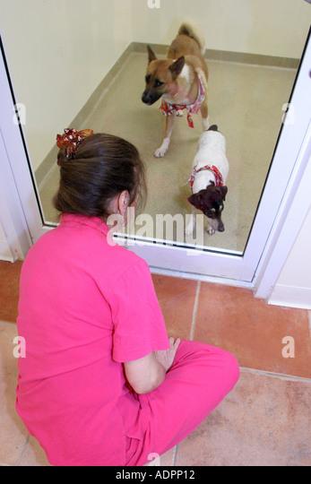 Adoption Center For Dogs In Miami