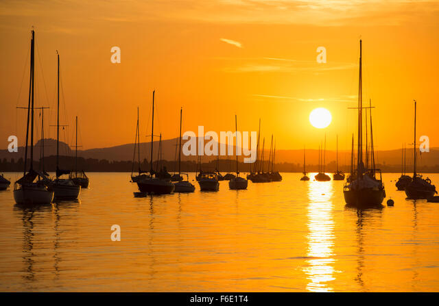 Sailing boats on Untersee, sunset, Allensbach, Lake Constance, Baden-Württemberg, Germany - Stock Image