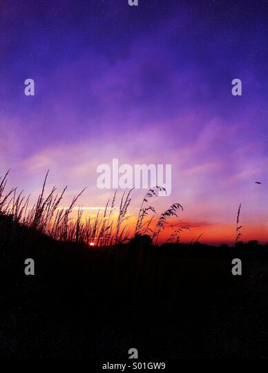 Purple sky sunset - Stock Image