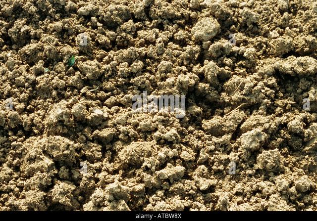 Loose soil, close-up, full frame - Stock Image