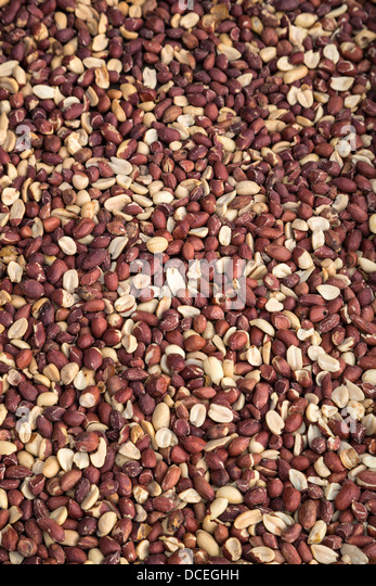 Peanuts, Fatick, Senegal - Stock Image