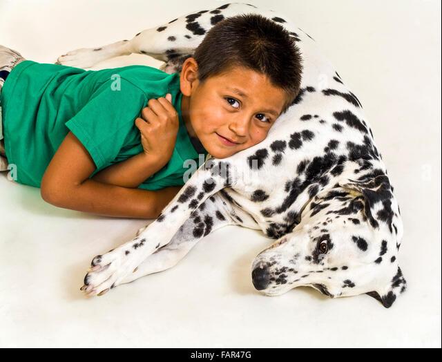 Young Hispanic boy with Dalmatian dog.  MR ©Myrleen Pearson - Stock-Bilder