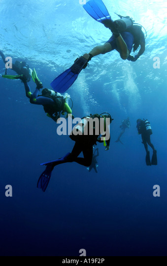 Divers doing safety stop on Super Caves Wall divesite Bahamas - Stock Image