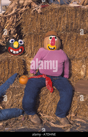 Halloween pumpkins dummies with painted pumpkin faces Fall Colors autumn - Stock Image