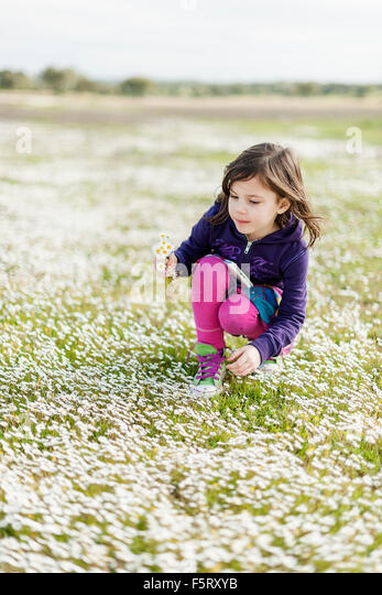 Portugal, Alentejo, Castro Verde, Girl (4-5) picking wildflowers - Stock Image