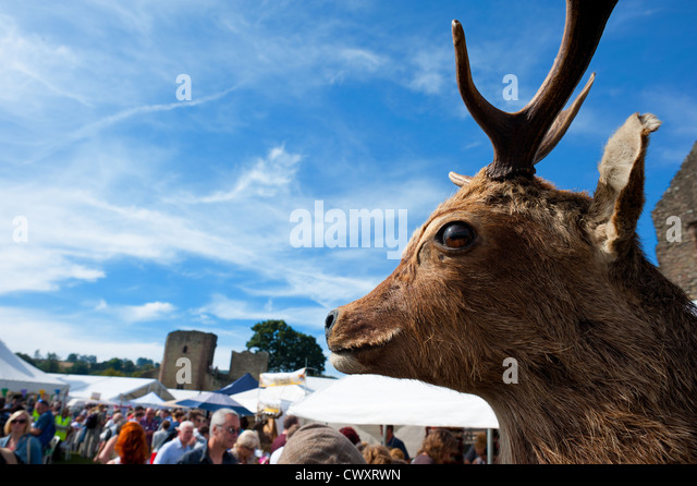 Ludlow Castle grounds during the 2012 Food Festival - Stock Image