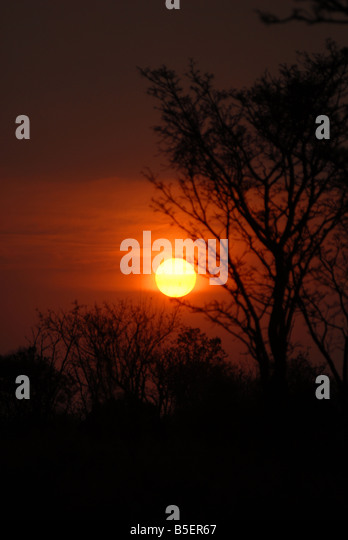 Sun sets in the Waterberg game Reserve in South Africa - Stock Image