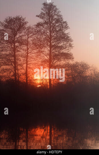 Foggy atmosphere, sunset, Peenetal Nature Park, Mecklenburg-Western Pomerania, Germany - Stock Image