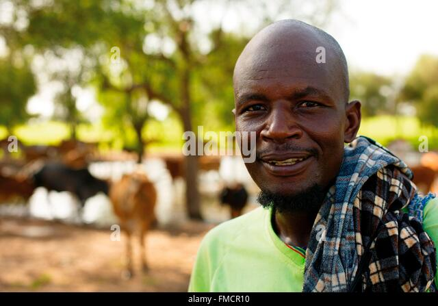 Senegal, Sahel, Ferlo region, Widou Thiengoly, shepherd - Stock Image