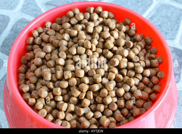 Dog Food Loughborough