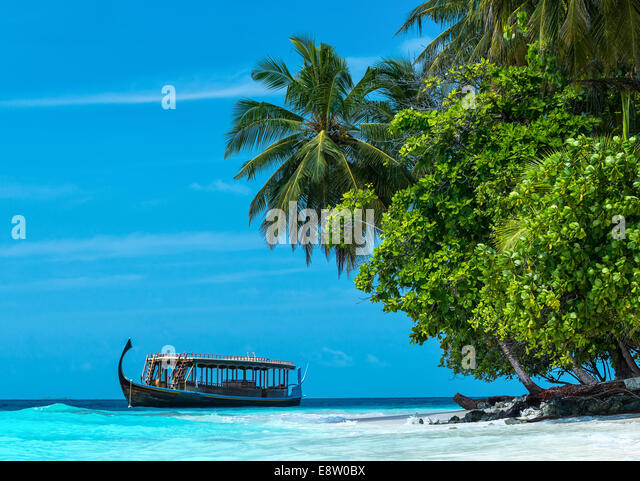Perfect tropical island paradise beach Maldives - Stock Image