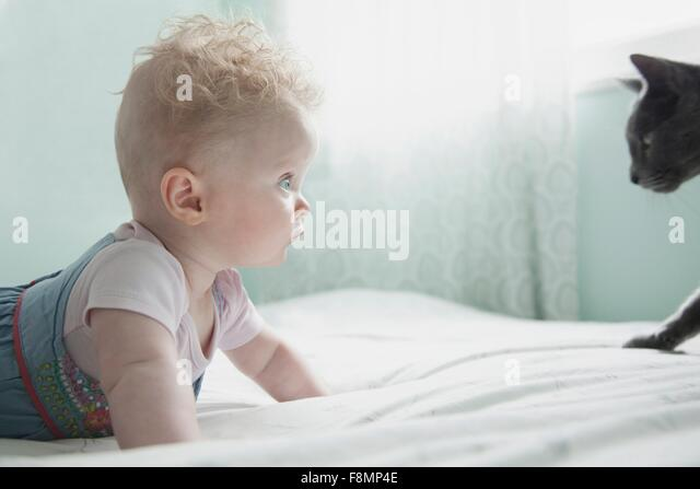 Baby girl and pet cat, face to face - Stock Image