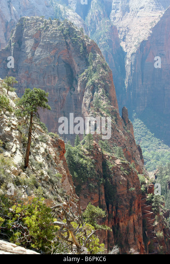 View of Angel's Landing from West Rim Trail above Scouts Landing, Zion National Park - Stock Image