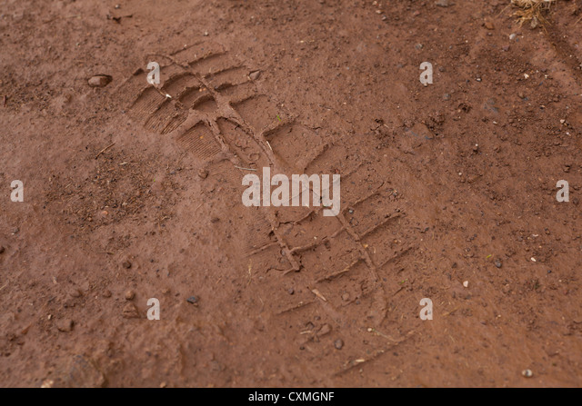 Partial shoe print in mud - Stock Image