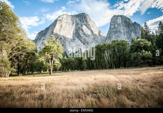 Yosemite half dome with meadow - Stock Image