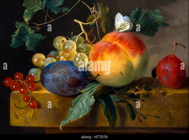Fruit Still Life, by Jan van Huysum, circa 1735, Royal Art Gallery, Mauritshuis Museum, The Hague, Netherlands, - Stock Image