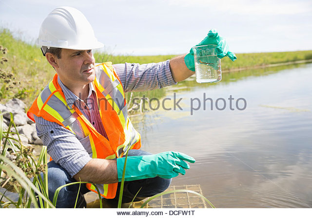 Ecologist examining water leech - Stock Image