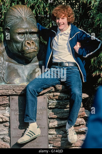 A monument with the frowning face of a male gorilla from Africa appears upset that a teenage boy with one hand under - Stock-Bilder
