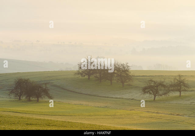 Countryside on Misty Morning, Monchberg, Spessart, Bavaria, Germany - Stock Image