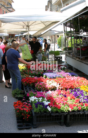 Market stall at a weekly flower market in the Le Marche Italy - Stock Image