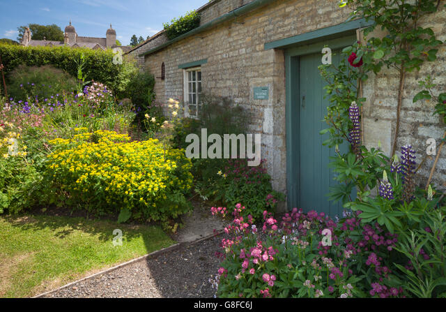 yellow lupins garden stock photos yellow lupins garden stock images alamy. Black Bedroom Furniture Sets. Home Design Ideas