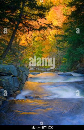 Tenant Creek Falls, Adirondacks, Hamilton County, New York State - Stock Image
