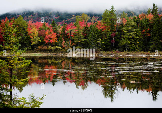 Autumn landscape, New England, America, USA - Stock Image