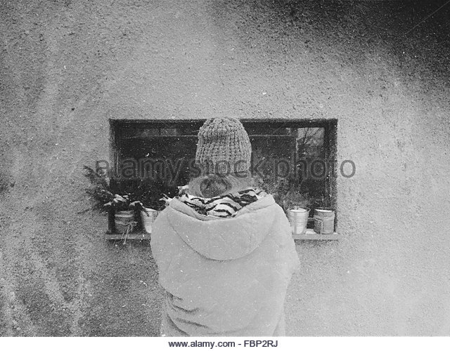 Rear View Of A Woman Looking At Pot Plants On Window - Stock-Bilder