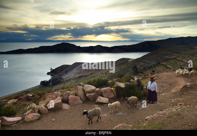 a woman with sheep, Isla del Sol, Lake Titicaca, Bolivia - Stock Image