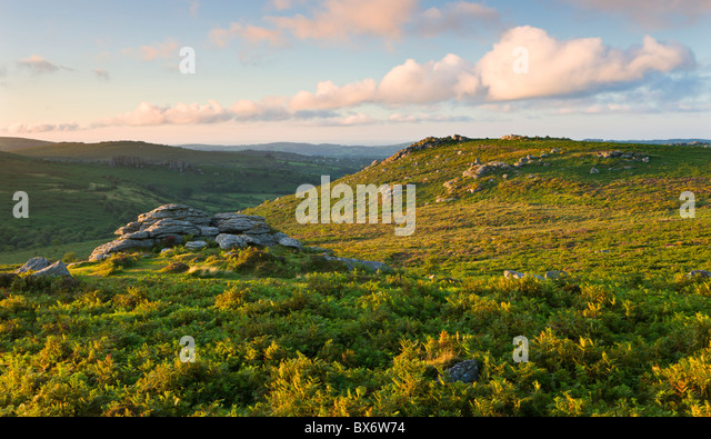Looking across bracken covered moorland to Holwell Tor, Dartmoor National Park, Devon, England. Summer (August) - Stock Image