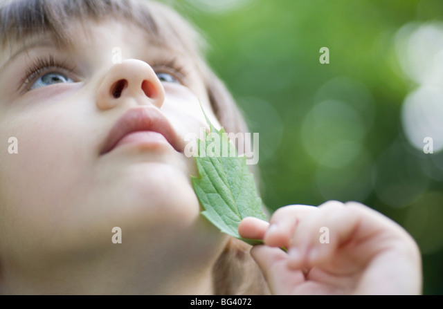 Girl holds leaf to her chin looking up - Stock Image
