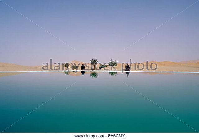 Palm tree reflection in desert - Stock Image