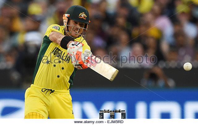MCG Stadium, Melbourne, Australia. 29th Mar, 2015. David Warner batting during the ICC Cricket World Cup Final. - Stock-Bilder