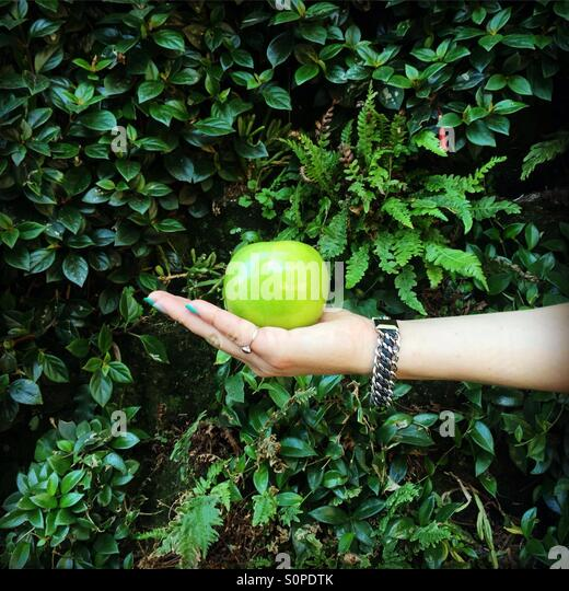 Green apple on the hand palm of a girl with the living wall background - Stock Image
