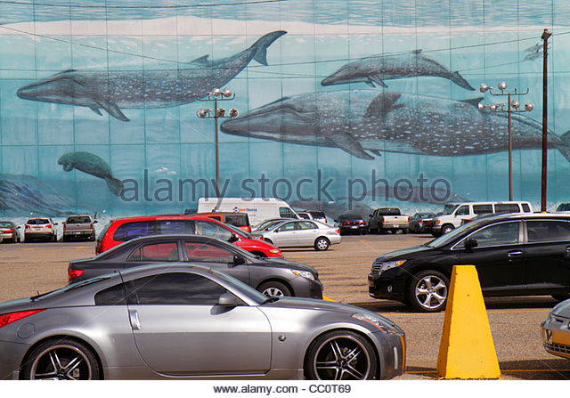 Louisiana New Orleans Convention Center Boulevard Riverwalk Marketplace marine mammals underwater scene ocean wall - Stock Image