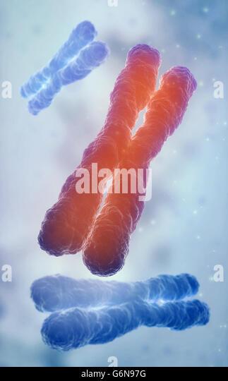 Chromosome 3D model - genetics illustration - Stock-Bilder