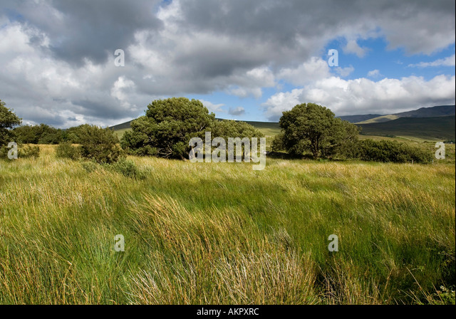 County Mayo Landscape, Ireland - Stock-Bilder