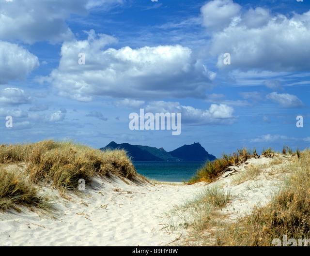 Dunes and ocean, North Island, New Zealand - Stock-Bilder