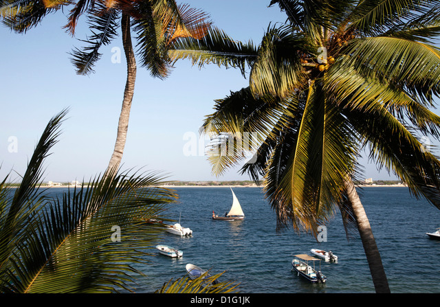 View from the Peponi hotel, Shela, Lamu Island, Kenya, East Africa, Indian Ocean, Africa - Stock Image